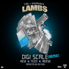 Digi Scale (Remix)