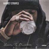 Harvey Stripes - Yours To Discover