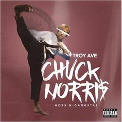 Chuck Norris (Hoes & The Gangstas)