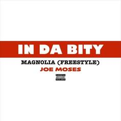 In Da Bity (Magnolia Freestyle)