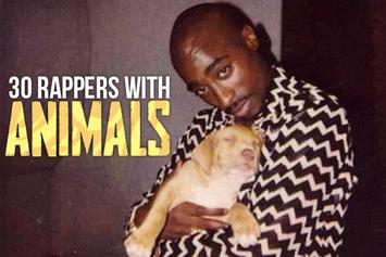 30 Photos Of Rappers Hanging With Animals
