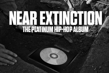 Near Extinction: The Platinum Hip-Hop Album
