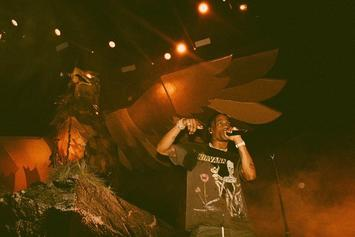 "Travis Scott Performs ""Butterfly Effect"" & ""Green & Purple"" Live For The First Time In St. Louis"